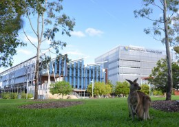 University of the Sunshine Coast 1