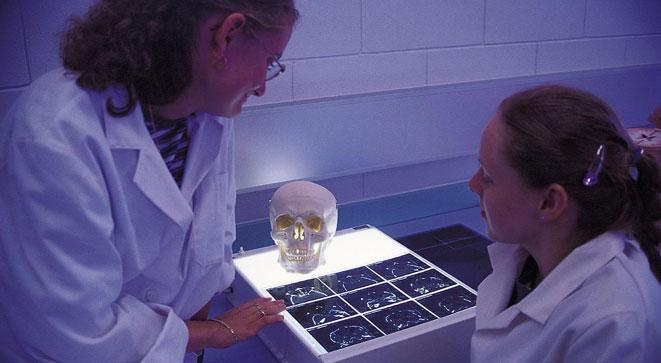 Röntgenbilder auf dem Leuchttisch